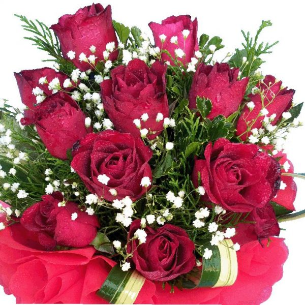 Dozen red Roses in a bouquet, close up