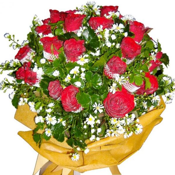 Two dozen red Roses in a bouquet, close up