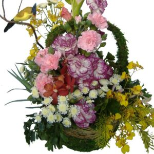 Mixed basket of flowers, close up
