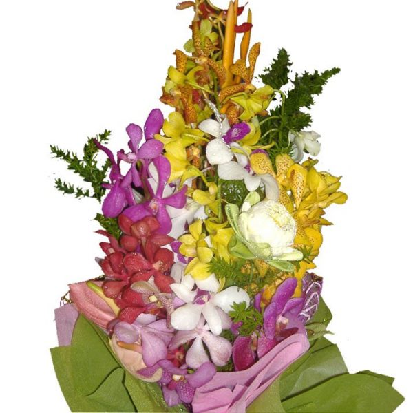 Mixed Orchids in a bouquet, close up