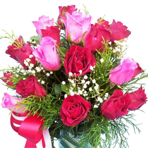 Red & pink Roses in a vase, close up