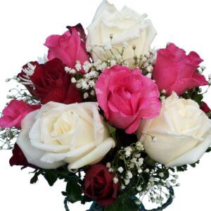 Red, pink & white Roses in a vase, close up