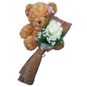 Traditional brown Teddy Bear together with a bunch of White Rose