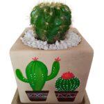Cactus In Hand Painted Pot close